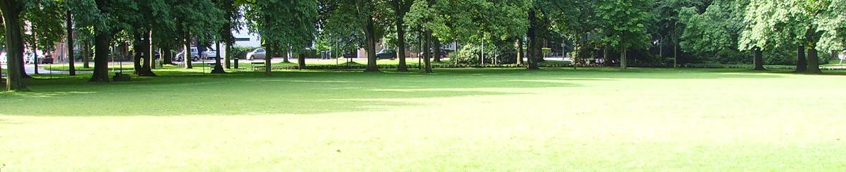 Meer dan 5.000 hoveniersbedrijven in Nederland slider